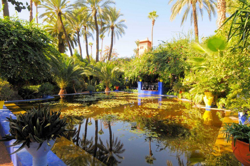 Majorel Garden